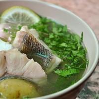 рецепты первых блюд - уха
